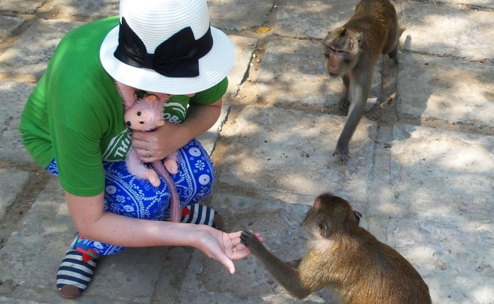 He isn't actually giving me a high-five; I am giving him a peanut. These monkeys were cheeky!