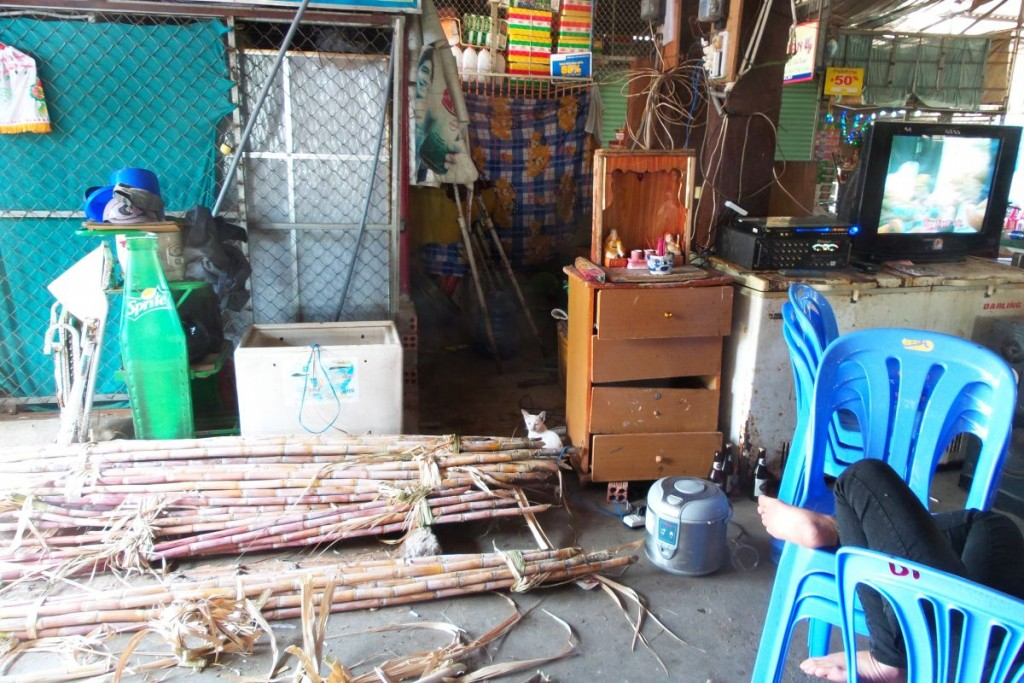 Can you spot the lucky little kitty who gets to live in cat paradise: a seafood market in Vietnam?