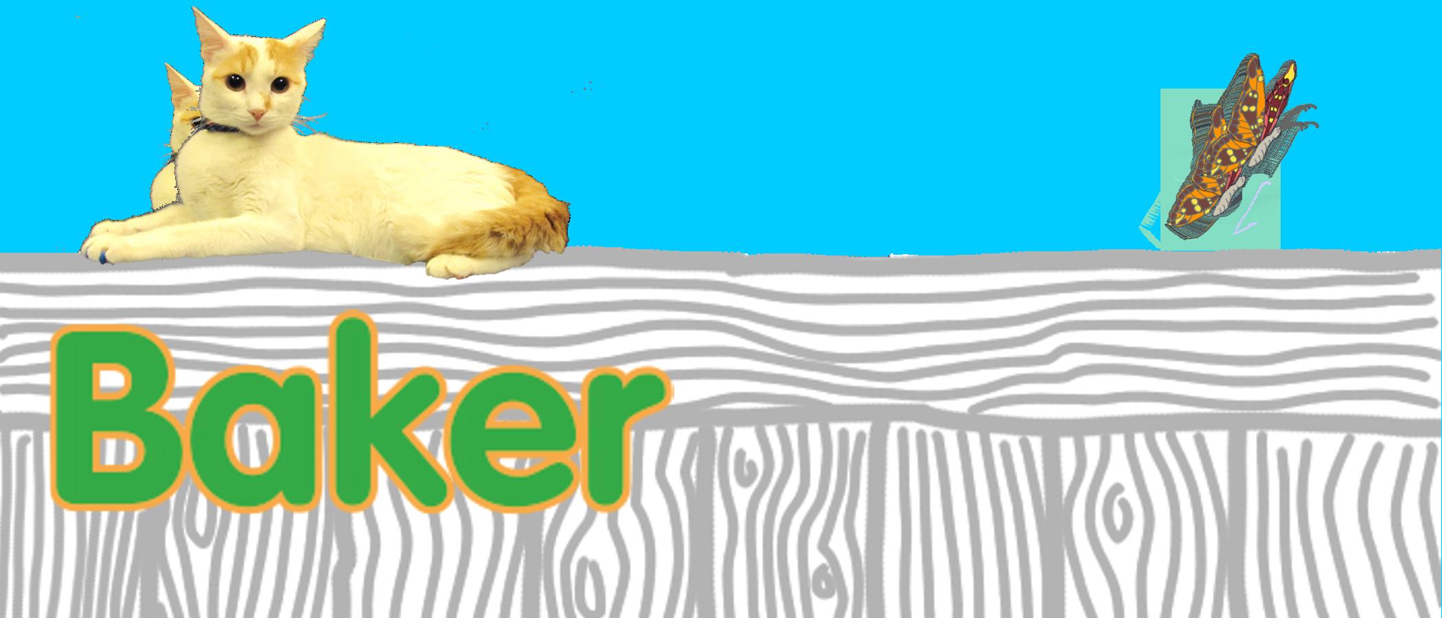 baker's profile