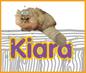 kiara's profile badge