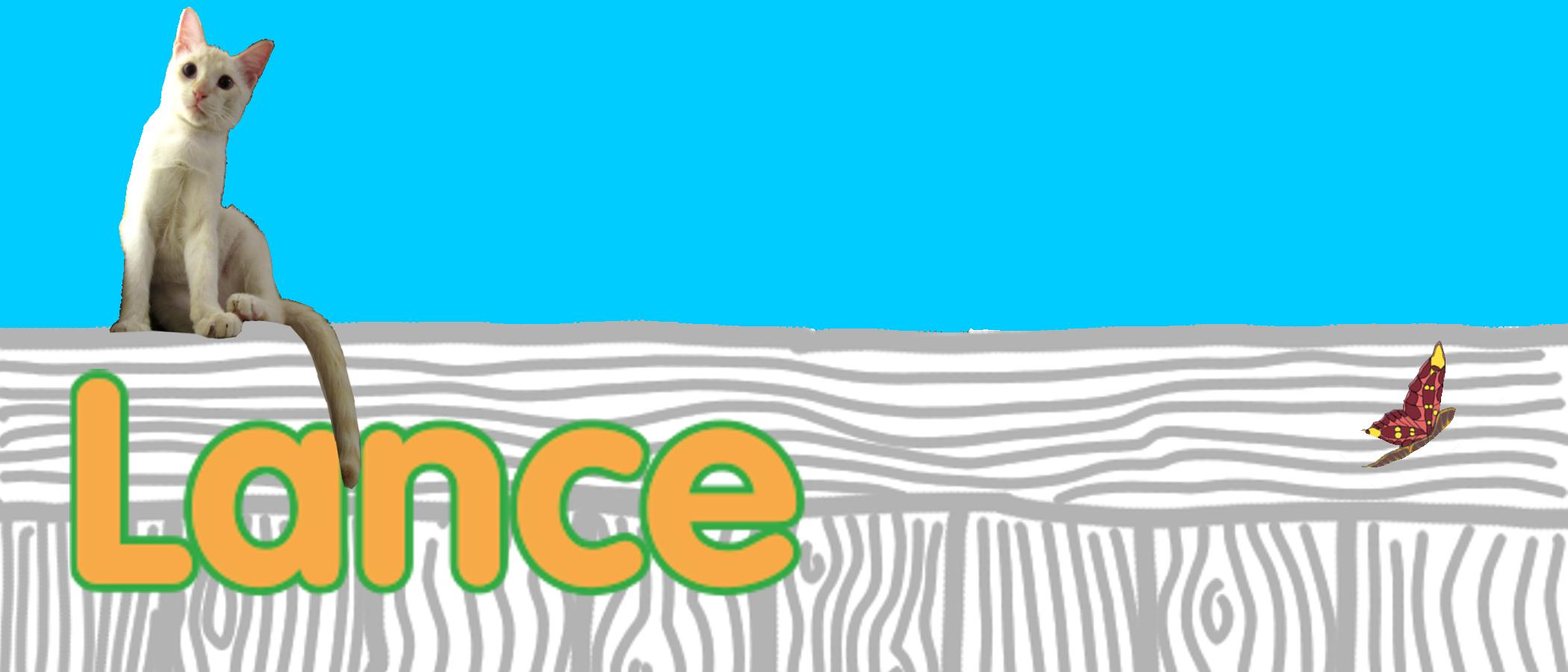 lance's profile