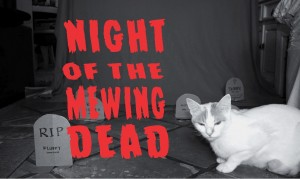 Spot the Kitty presents: Night of the Mewing Dead