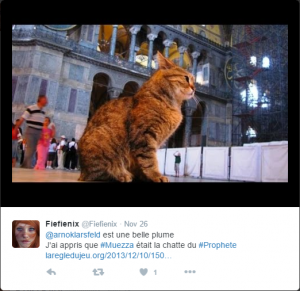 Muezza was the name of Prophet Mohammed's favourite cat. Here is a tweet of a cat named Muezza visiting a mosque.