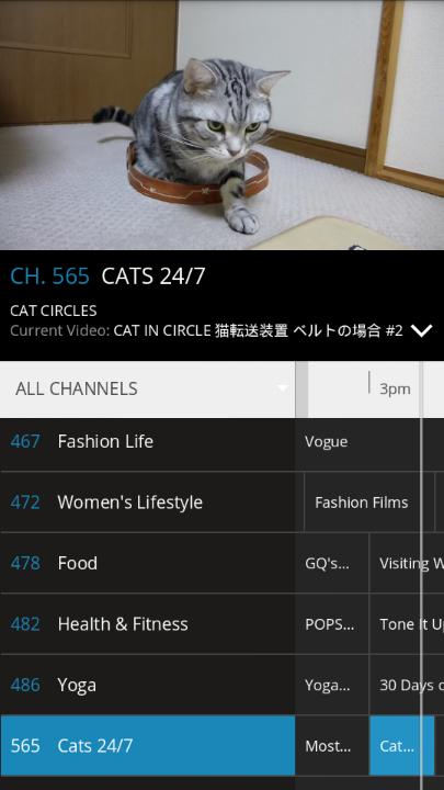 Pluto TV Cats 24-7