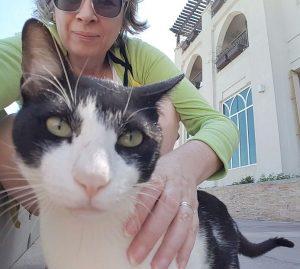 abu dhabi kitty selfie